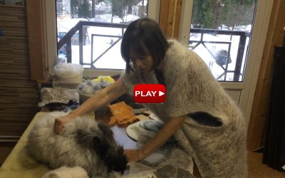 Как работать с пухом ангорского кролика? Елена Найденова