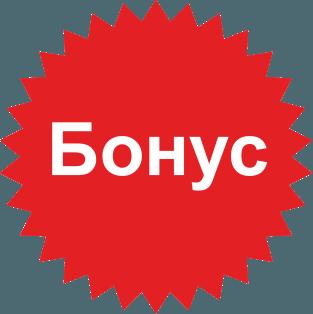 О.Ткаченко, Н.Кондрашева «Войлок и скромное обаяние САШИКО»